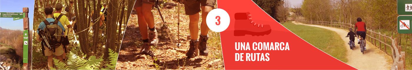 8 razones para escoger La Selva