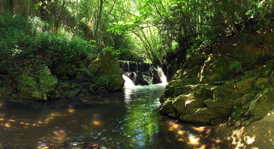 Resultado de imagen de parque natural montseny